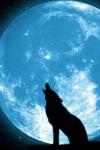 8 Datos que debes saber sobre la luna azul