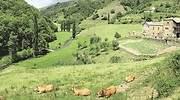 viticultores-heroicos-asturianos-1.jpg