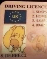 Un conductor trata de sortear un control de tráfico presentando un carné de Homer Simpson