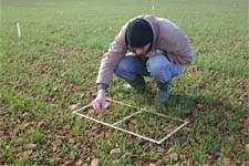 Aragón ha incorporado 834 jóvenes agricultores en dos años