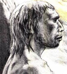 hombre_neandertal.jpg