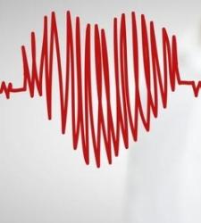 ESTUDIO EN ESTADOS UNIDOS: Las claves del coraz�n: as� funciona el bombeo de sangre