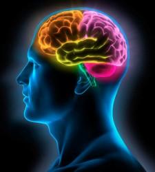 ESTUDIO EN ESTADOS UNIDOS: El secreto de los suspiros: as� nacen en nuestro cerebro