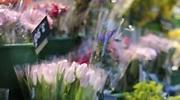 flores-precios.jpg