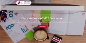 Aemes-web