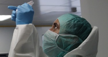 La base genética de la enfermedad - 375x200
