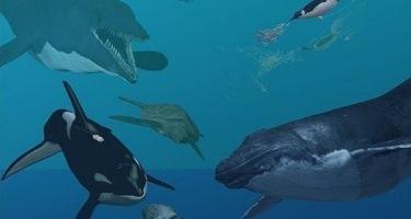 �Qu� especies pasaron de vivir en el mar a habitar en la tierra?