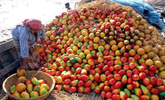 recoleccion-mango-reuters.jpg