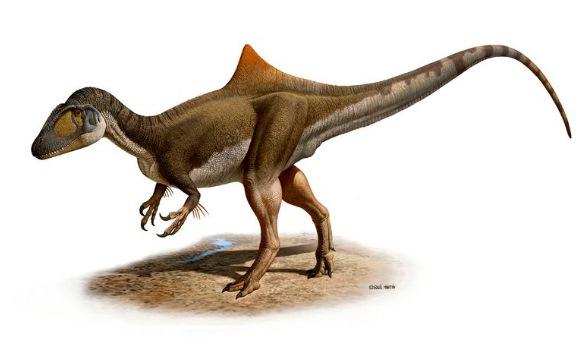 dinosaurio-pies-gallina-efe.jpg