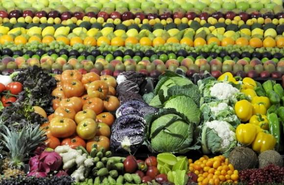 Resultado de imagen de verduras efe