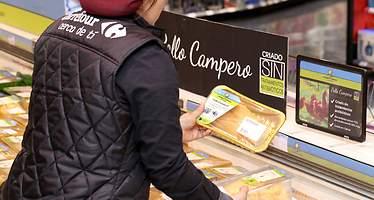 Carrefour lanza en Aragón el primer pollo campero sin tratamientos antibióticos