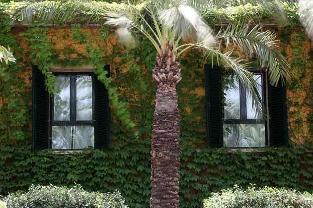 Hotel jard n milenio d a del padre en el tr pico for Jardin milenio