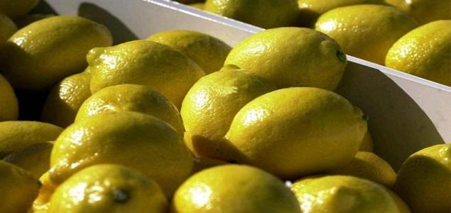 limones_635x300.jpg
