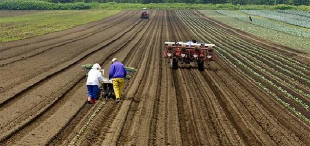 agricultores_635.jpg