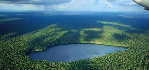 selva-peru2.jpg