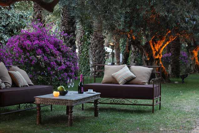 Hotel jard n milenio nuestro refugio en el palmeral de for Jardin milenio elche