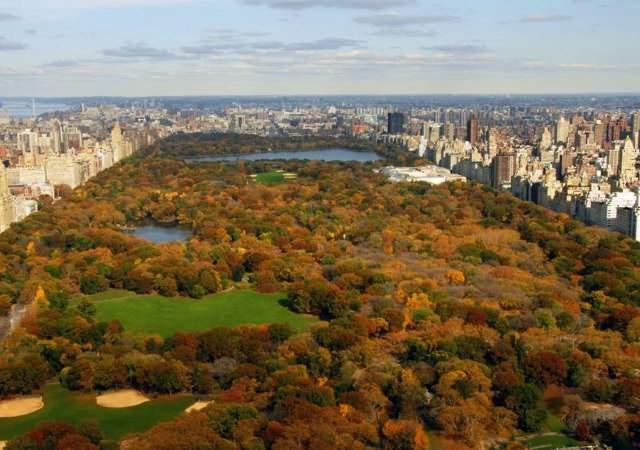 Central Park está en peligro