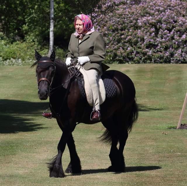 Primeras imágenes de Isabel II en el confinamiento: montando a caballo a  los 94 años - Informalia.es