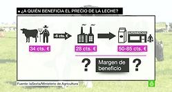 ¿Soluciones para el sector lácteo?