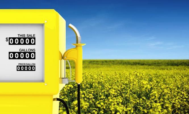 Europa limita el biocombustible - 310x