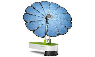 La revolución del girasol solar - 310x