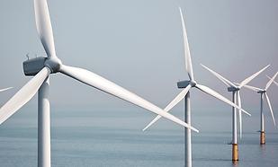 Los gurús invierten en renovables