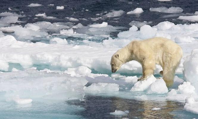 oceano-artico-deshielo.jpg