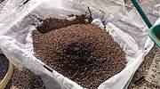 Tebrio invertirá 50 millones en Salamanca en una planta de cría de insectos para alimentación animal