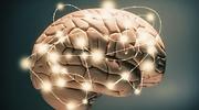 cerebro-luces.jpg