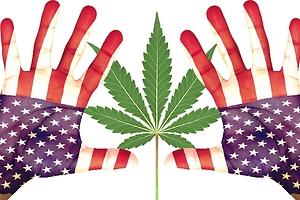 Wall Street no apoya el cannabis