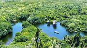Así es La Tovara, el enclave natural y salvaje más deseado de México