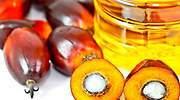 En el mundo sobra aceite de palma: los grandes inventarios y las restricciones acorralan a la industria