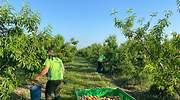 Asaja Huesca pide una PAC para producir y no cuidar jardines