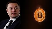 elonmusk-bitcoin-dreamstime.png