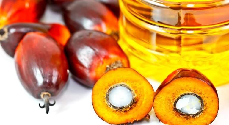palma-fruto-aceite.jpg