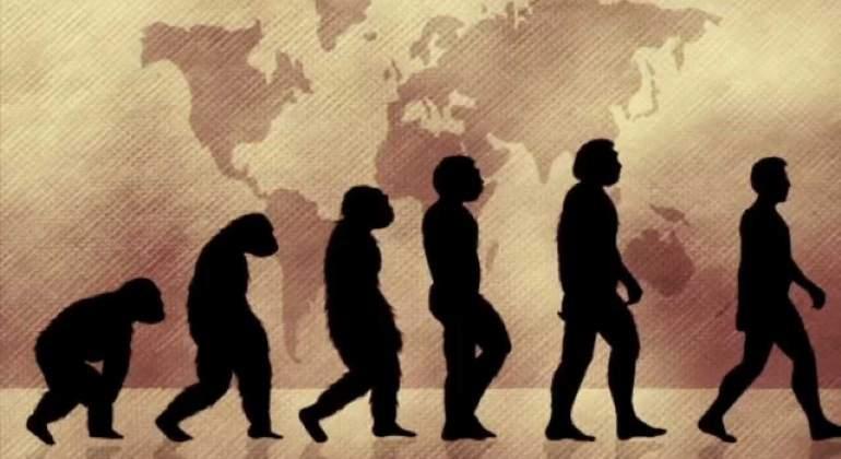 Teoria-evolucion-archivo-770.jpg