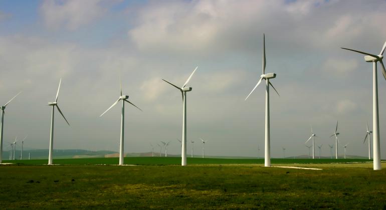 renovables.png