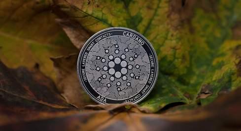 El rally alcista de cardano deja en nada al del bitcoin y se coloca como  tercera criptodivisa por capitalización - elEconomista.es
