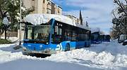 Bus y Metro piden 8.000 millones a la UE para renovar flota y digitalizarse