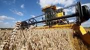 trigo-campo-tractor-reuters.jpg