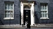 larry-downing-street-gato-reino-unido-reuters-770x420.jpg