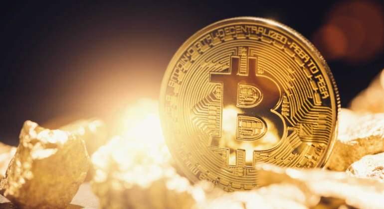 bitcoin-tulipan.jpg
