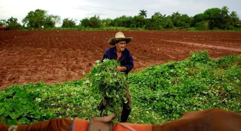 agricultor-cuba-mayor-reuters-770x420.jpg