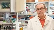 Podremos volver a nuestra vida en otoño: la predicción del parasitólogo tras la vacuna del CSIC