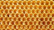 ¿Dónde compro la mejor miel de España? La OCU se decanta entre los supermercados más populares