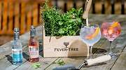 Talleres de coctelería con Fever-Tree en la feria Madrid Craft Week