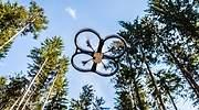 Drones, big data e ingeniería genética: tecnología punta para reforestar