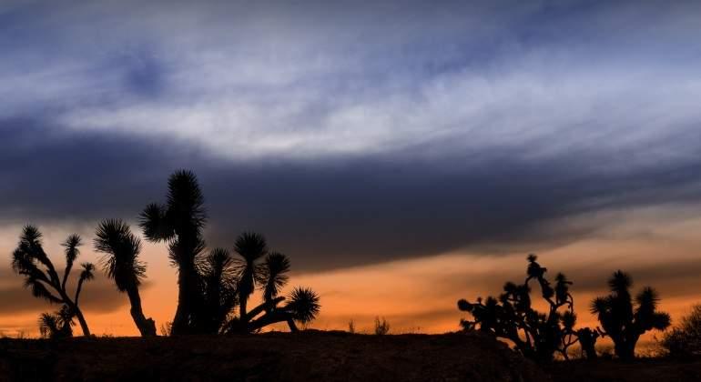 desierto-dreams.jpg