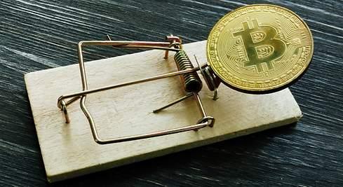 Bitcoin rubati in Sud Africa: è la truffa del secolo! - giuseppeverdimaddaloni.it