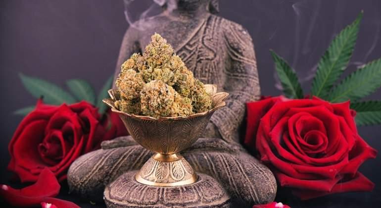 rosas-marihuana-buda-dreams.jpg